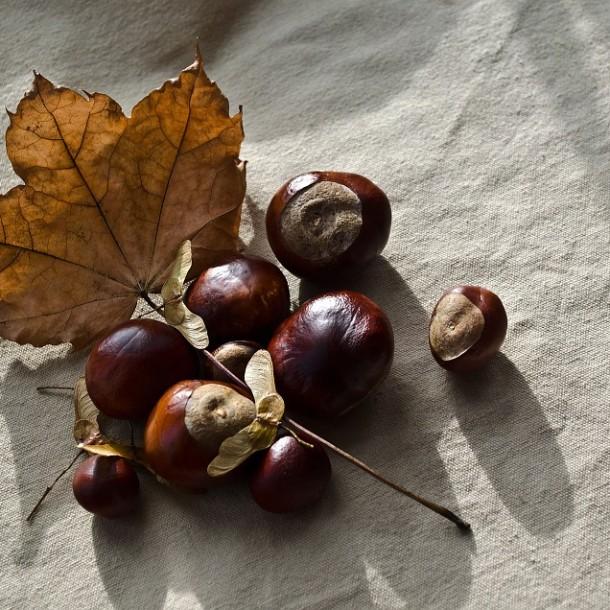 autumn-72195_960_720